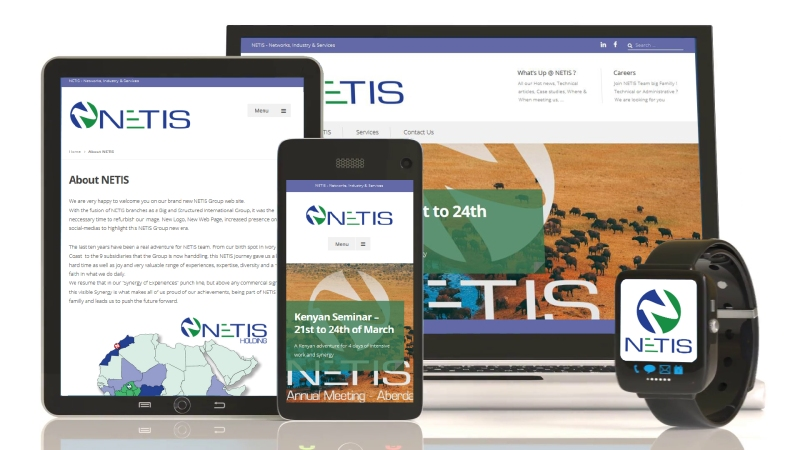 NETIS Group - New Web site